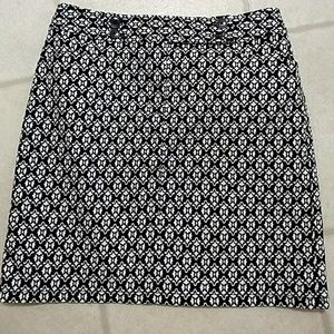 Ann taylor blue and white skirt